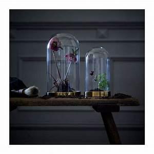 Glasglocke Mit Teller : die besten 25 ikea teller ideen auf pinterest geschirr ikea geschirrset grau und graue ~ Orissabook.com Haus und Dekorationen