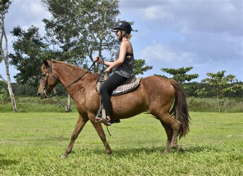 riding horseback hacienda puerto rico juan san carnival excursions line favorites