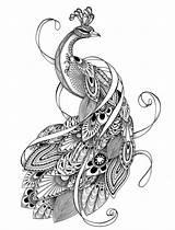 Coloring Peacock Adult Mandala Printable Paisley Enregistree Depuis Colorier Paon Dessin sketch template