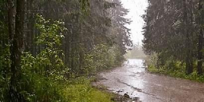 Rain Heavy Storms Alert Forecast Wtoc Source