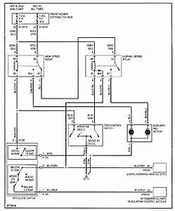 E36 M3 Aux Fan Switch Wiring Diagram
