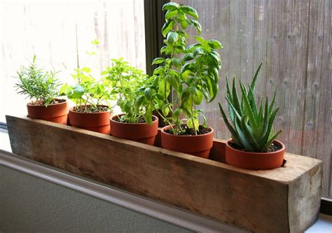 Window Sill Herb Garden Pots by Window Herb Planter The Aesthetic Abode In 2019 Herbs