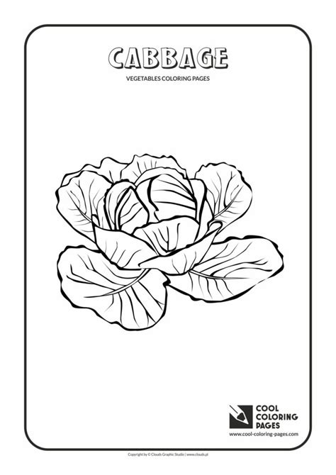 cool coloring pages cabbage coloring page cool coloring pages  educational coloring
