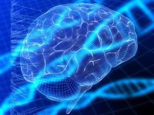 2036 Future Timeline | Timeline | Technology | Singularity ...