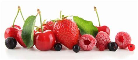 cuisiner des airelles recettes de fruits rouges idées de recettes à base de