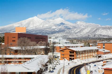 Northern Arizona University  Online, Bachelor's, Graduate