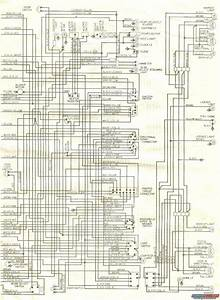 1979 Mgb Roadster Wiring Diagram  1979  Free Engine Image For User Manual Download