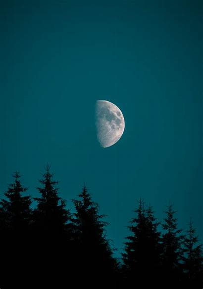 Moon Iphone Half Pine Wallpapers Pro Forest