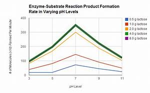 Enzyme-controlled Reactions