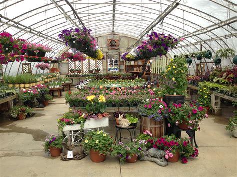 rogers garden center garden center photo gallery rogers spring hill garden center