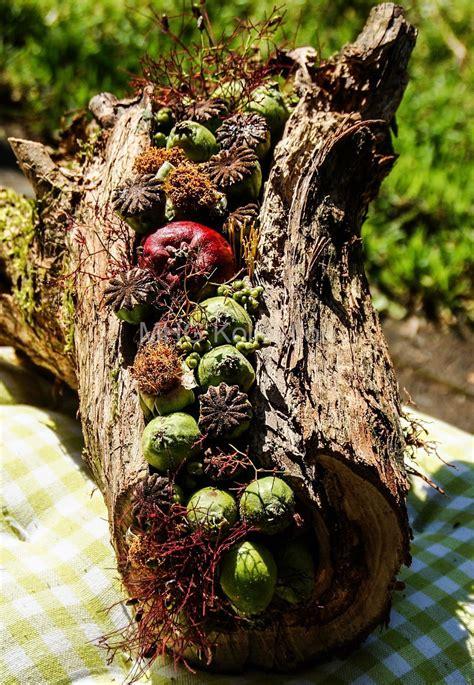 Herbstdeko Holz Garten by Blumenfrauen Aus Brennholz Wird Dekoration Tutorial