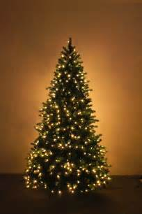 12 Ft Christmas Tree Uk the ultra devonshire pre lit fir tree with warm white leds