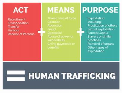 Trafficking Human Definition Organs Traffickers Infographic Greece