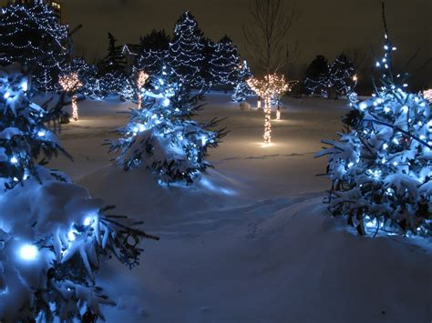 chinguacousy park christmas lights jigsaw puzzle in