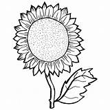 Sunflower Coloring Pages Adults Drawing Sheets Seeds Getdrawings Young Ve Sheet Colorings Clipartmag Printable Survival Line Lawler Butting Colored Trending sketch template