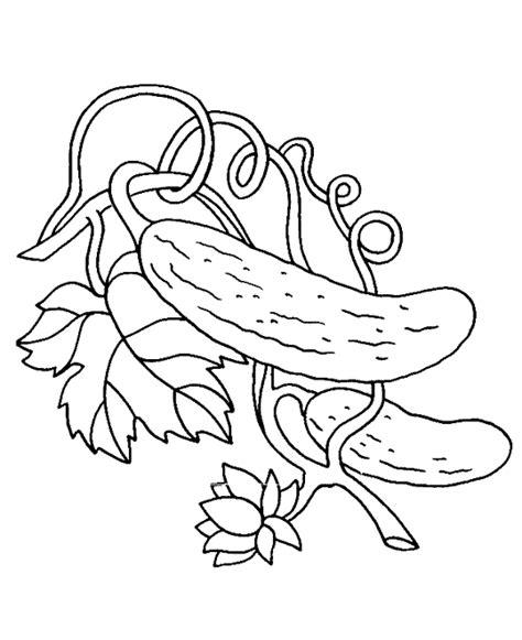 voir cuisine dididou coloriage légumes cornichon