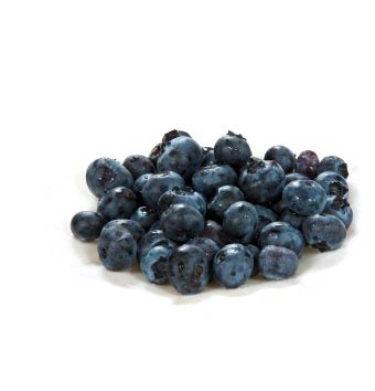 what can you make with blueberries blueberry john vena inc