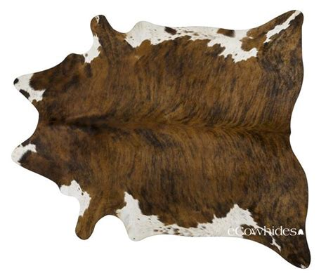 How To A Cowhide by Brindle White Belly Cowhide Rug Cow Hide Rugs Xl