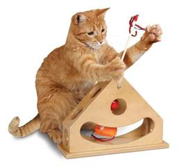 cat products smartcat tick tock teaser interactive cat bowhouse