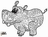 Coloring Hippo Doodles Printable Adult Doodle Sheets Stevie Steviedoodles Zoo sketch template