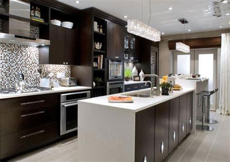 fotos de cocinas modernas  elegantes