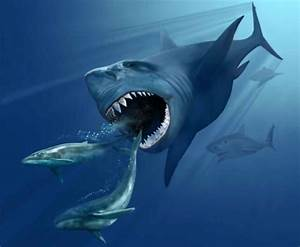 Megalodon Became Extinct 2.6 Million Years Ago ...