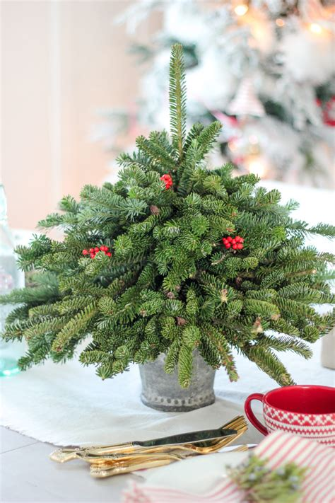 tabletop christmas trees 14 diy tabletop trees that excite shelterness