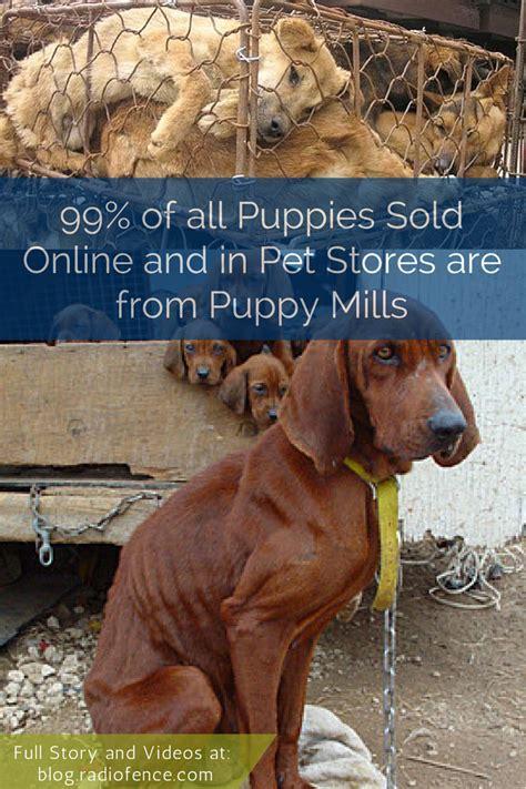 Puppy Mill Quotes. QuotesGram