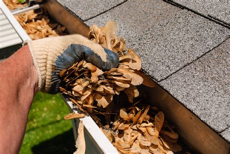 gutter cleaning  perfect landscaping