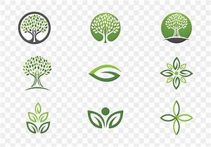 Flora Leaf Definition