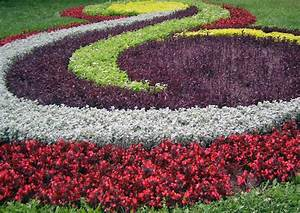 Flower Garden Ideas Innovative Decoration Flowers Best