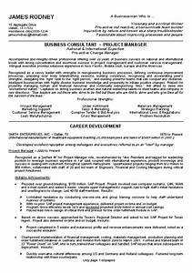 Business Resume Example Sample