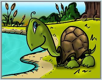 I had a little turtle, his name was tiny tim. There Was a Little Turtle