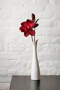 Blumen In Der Box : blumen in der wei en vase auf dem tisch stockfoto colourbox ~ Orissabook.com Haus und Dekorationen