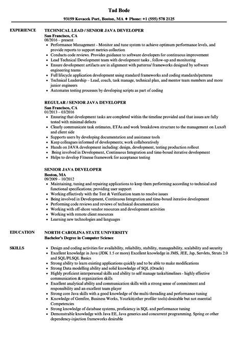 resume of a senior java developer senior java developer resume sles velvet