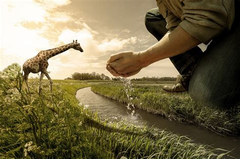 visual effects photography art people gallery