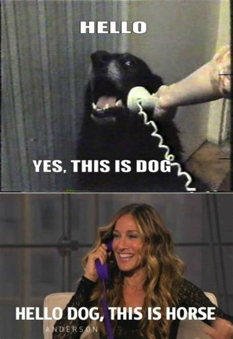 Yes This Is Dog Meme - image 225374 yes this is dog know your meme