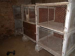 Piquet De Cloture Bois Acacia : fabrication des piquets de cl ture en bois d 39 acacia ou de ~ Dailycaller-alerts.com Idées de Décoration