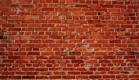 cuisine fabrication choisir les briques pour mur