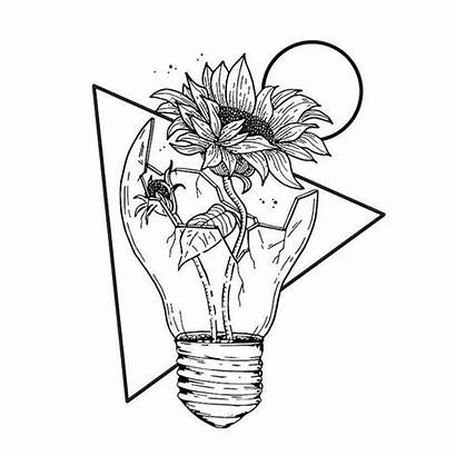 Easy Pencil Drawing Drawings Draw Flowers Sunflower