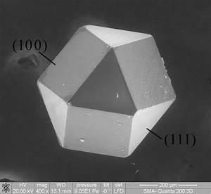 The Cuboctahedron