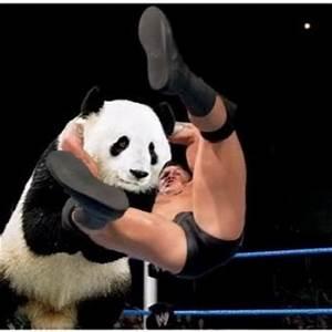 RKO VINES! (@RandysRKOVines) | Twitter