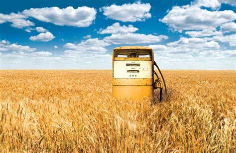 Производство биомассы для энергетических целей альтернативные источники энергии