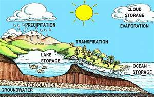 The Water Cycle Diagram Animated