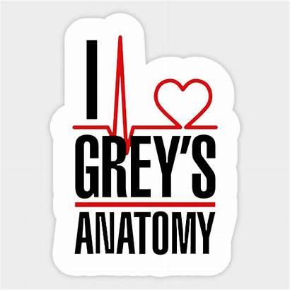Anatomy Greys Grey Sticker Teepublic Shirt Svg