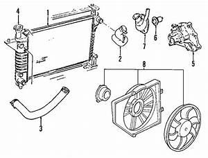 Ford Mustang Radiator Coolant Hose  Upper   4 6 Liter