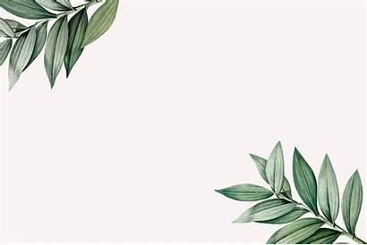 Background Aesthetic Leaves Desktop Tropical Laptop Leaf