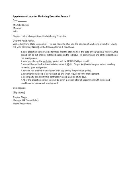 appointment letter  marketing executive templates