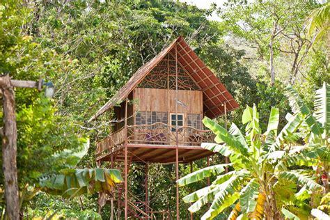 Tree House Airbnb 10 Charming Eco Friendly Airbnb Rentals Around The World