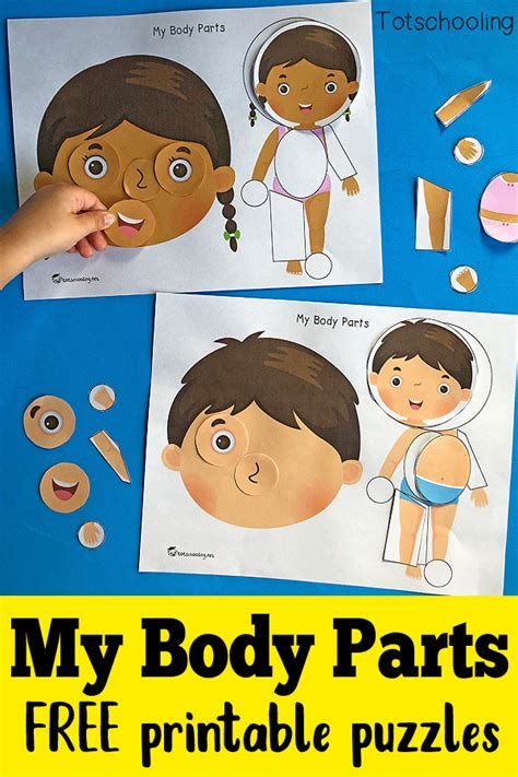 my parts printable puzzles totschooling toddler 915 | My Body Parts